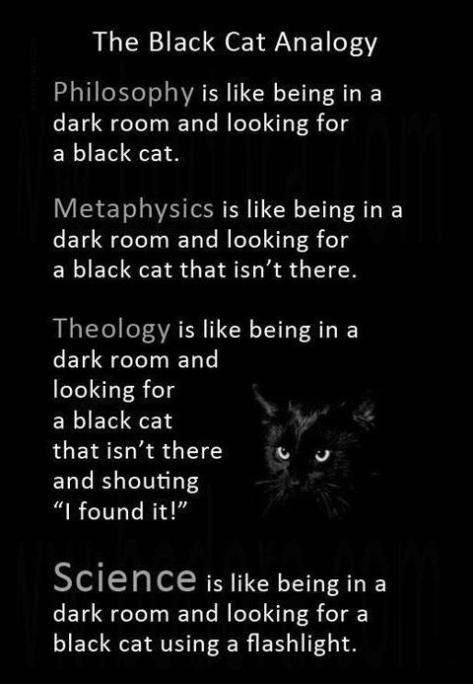 Black Cat Analogy